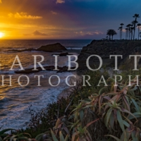 Nora Garibotti Photography